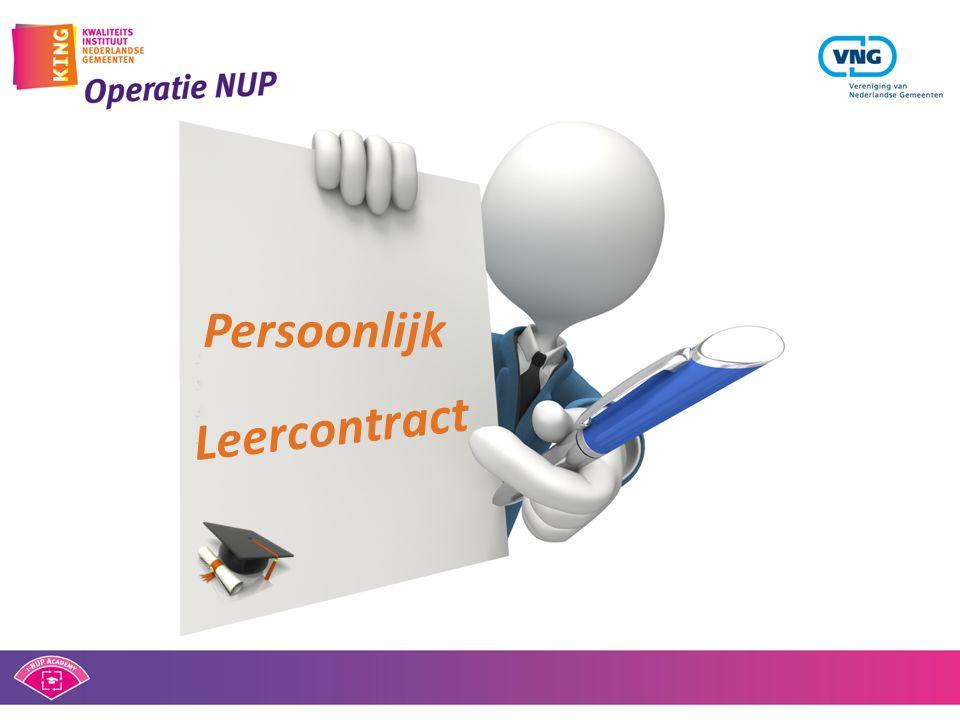 Bepalen op welke momenten tijdens de bouw controle op Webrichtlijnen een rol speelt en hoe gecontroleerd wordt.
