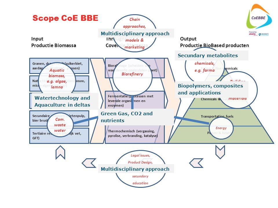 Tertiaire residuen (dierlijk vet, GFT) Secundaire residuen (bietenpulp, bier brush) Primaire residuen (bermgras, houtafval, snoeiafval, koolblad..) Granen, droge teelt (suikerbiet, aardappel, koolzaad, grassen) Natte teelt (zoutwaterlandbouw, micro-algen, zeewier) Input Productie Biomassa Throughput Coversie Biomassa Output Productie BioBased producten Bioraffinage (scheiden van waardevolle onderdelen plant) Fermentatie (processen met levende organismen en enzymen) Thermochemisch (vergassing, pyrolise, verbranding, katalyse) Farma & fine chemicals Food & feed Chemicals & materials Transportation fuels Power & heats Aquatic biomass, e.g.