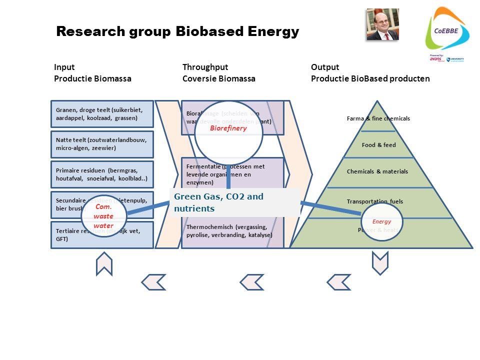 Tertiaire residuen (dierlijk vet, GFT) Secundaire residuen (bietenpulp, bier brush) Primaire residuen (bermgras, houtafval, snoeiafval, koolblad..) Granen, droge teelt (suikerbiet, aardappel, koolzaad, grassen) Natte teelt (zoutwaterlandbouw, micro-algen, zeewier) Input Productie Biomassa Throughput Coversie Biomassa Output Productie BioBased producten Bioraffinage (scheiden van waardevolle onderdelen plant) Fermentatie (processen met levende organismen en enzymen) Thermochemisch (vergassing, pyrolise, verbranding, katalyse) Farma & fine chemicals Food & feed Chemicals & materials Transportation fuels Power & heats Research group Biobased Energy Com.