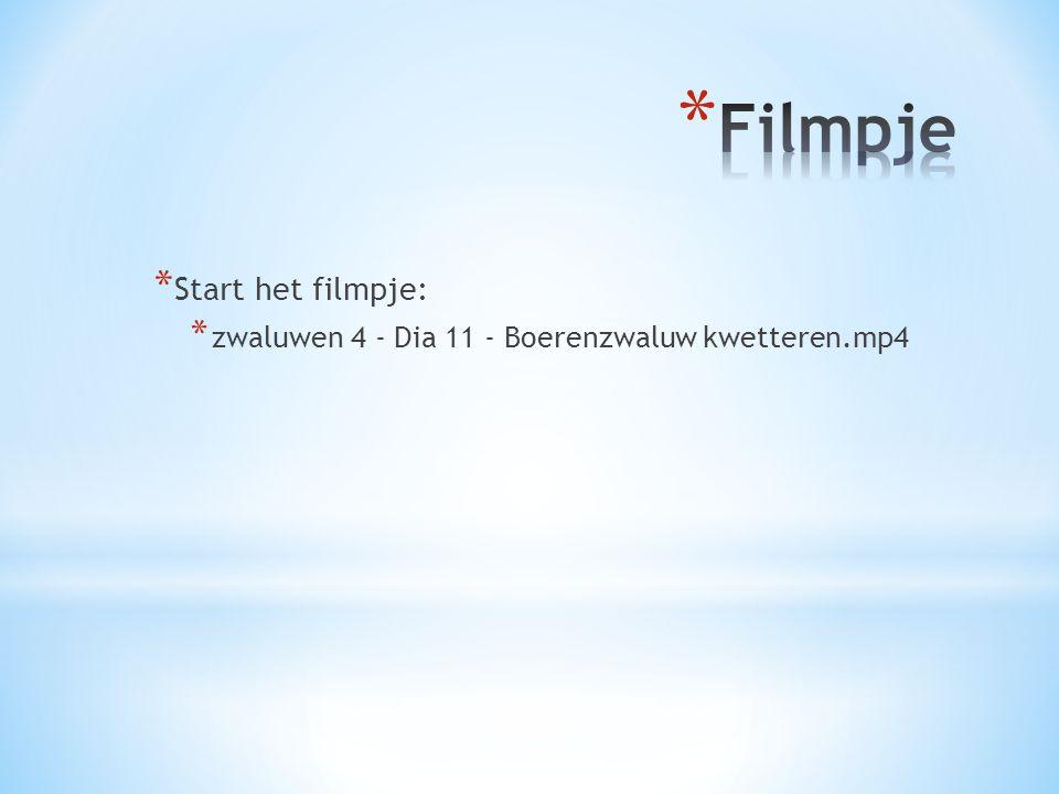 * Start het filmpje: * zwaluwen 4 - Dia 11 - Boerenzwaluw kwetteren.mp4