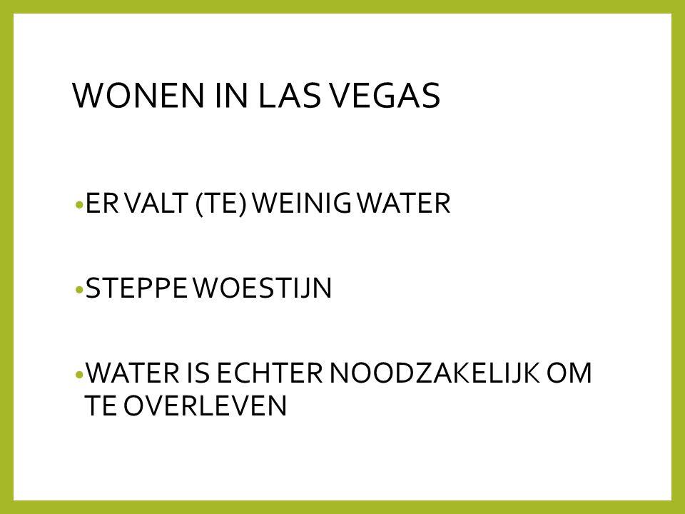 WONEN IN LAS VEGAS • ER VALT (TE) WEINIG WATER • STEPPE WOESTIJN • WATER IS ECHTER NOODZAKELIJK OM TE OVERLEVEN