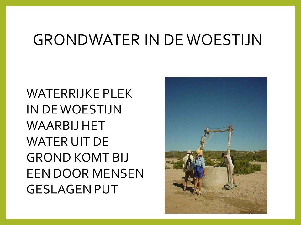 GRONDWATER IN DE WOESTIJN WATERRIJKE PLEK IN DE WOESTIJN WAARBIJ HET WATER UIT DE GROND KOMT BIJ EEN DOOR MENSEN GESLAGEN PUT