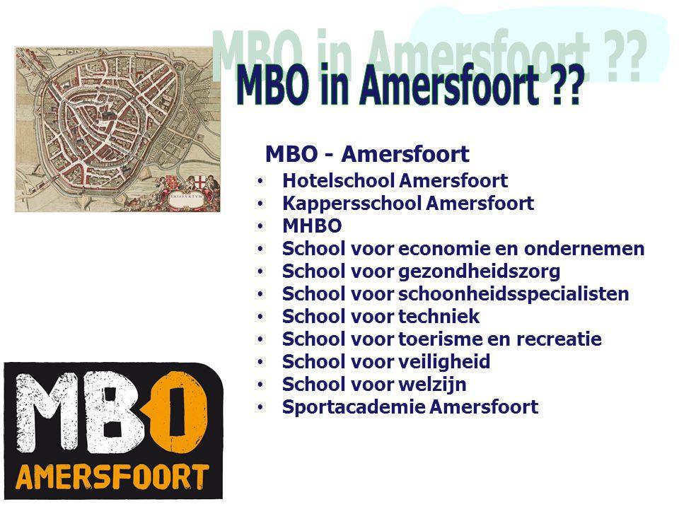 • Hotelschool Amersfoort • Kappersschool Amersfoort • MHBO • School voor economie en ondernemen • School voor gezondheidszorg • School voor schoonheid