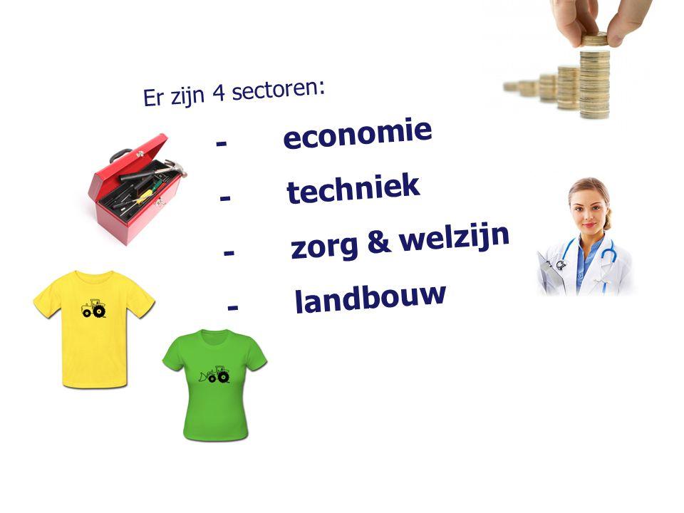 Er zijn 4 sectoren: -economie -techniek -zorg & welzijn -landbouw