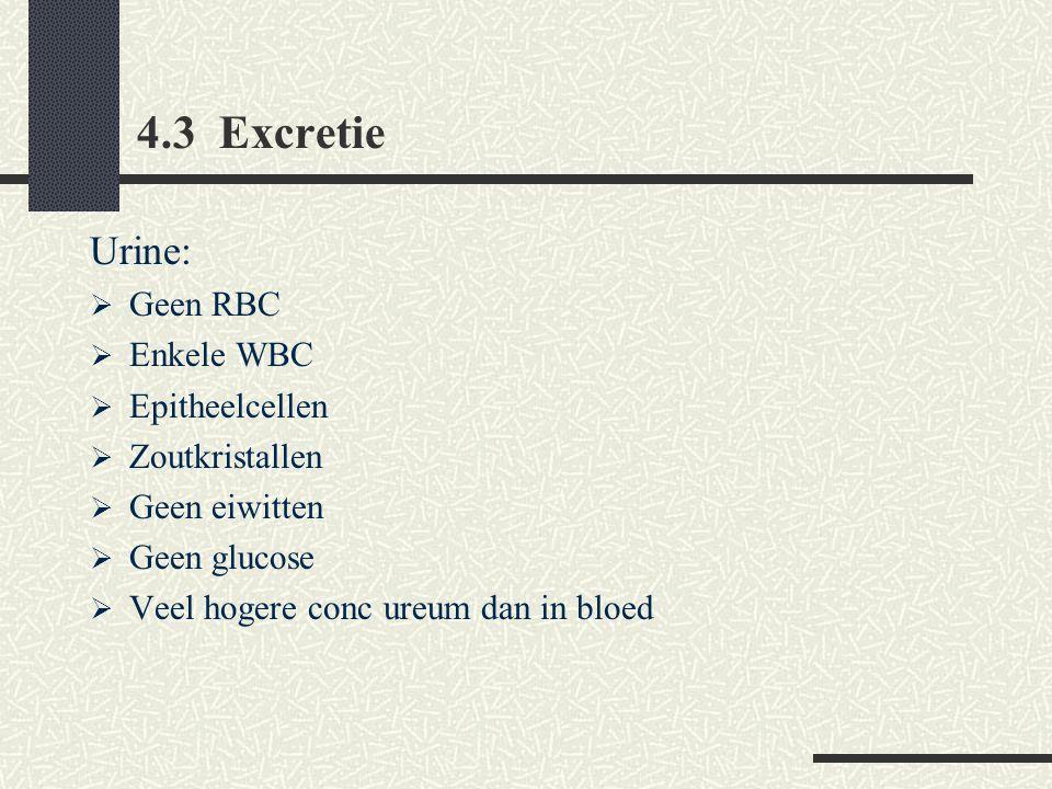 4.3 Excretie Urine:  Geen RBC  Enkele WBC  Epitheelcellen  Zoutkristallen  Geen eiwitten  Geen glucose  Veel hogere conc ureum dan in bloed