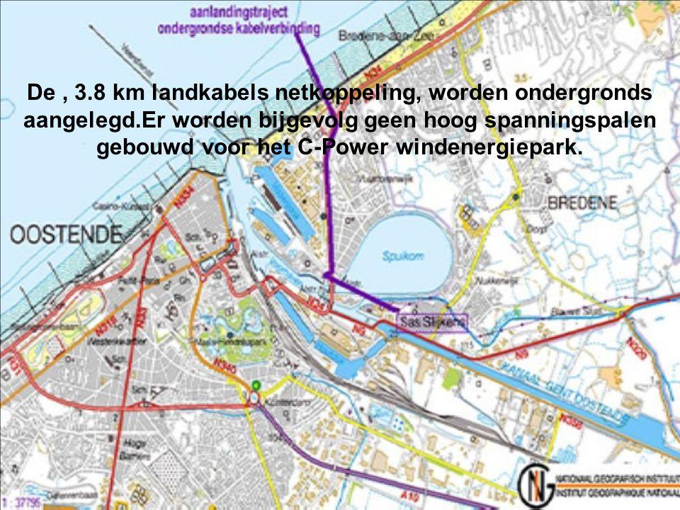 De zeekabels (150kV) tussen offshore transformatorplatform en het openbare 150kV net aan land staan in voor het transport van de geproduceerde energie