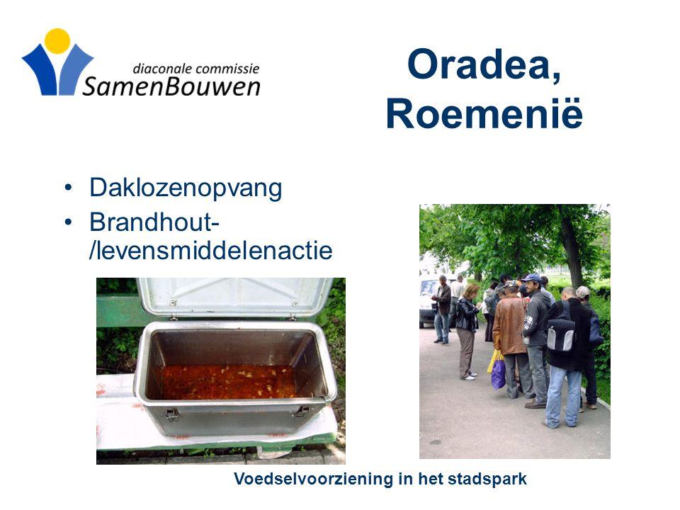 Oradea, Roemenië •Daklozenopvang •Brandhout- /levensmiddelenactie Voedselvoorziening in het stadspark