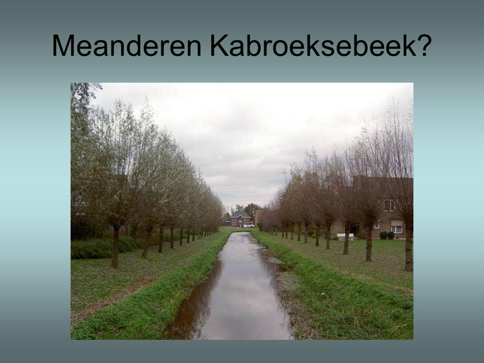 Meanderen Kabroeksebeek