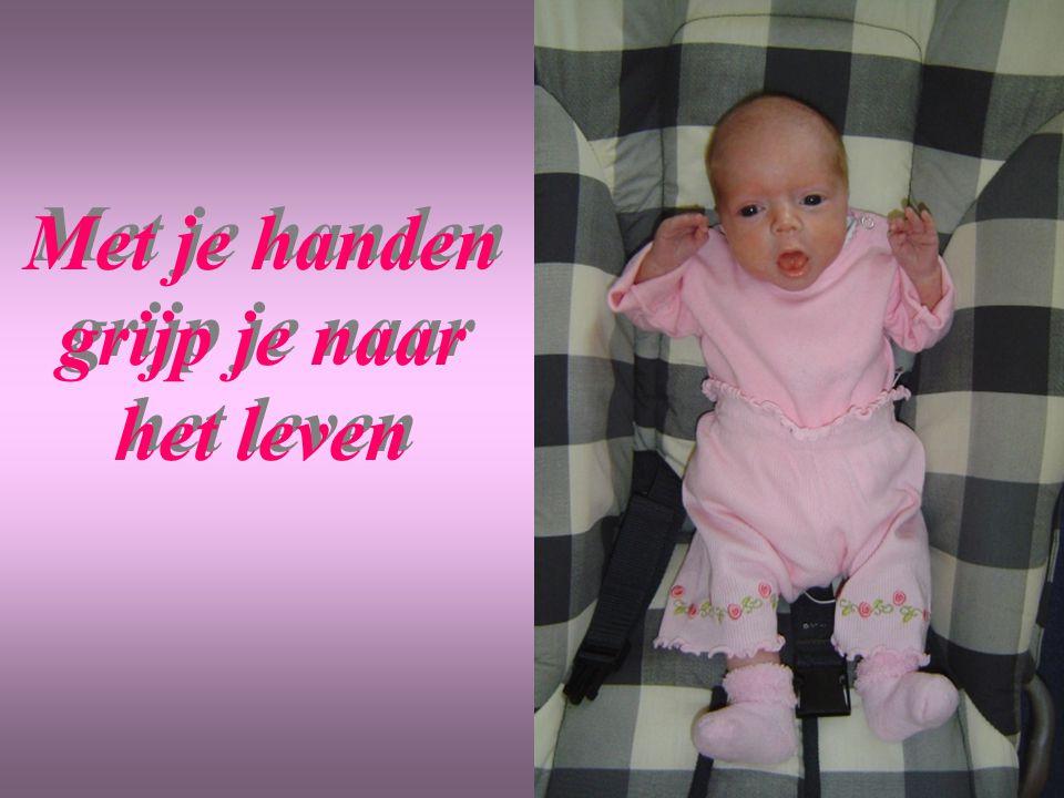 Met je handen grijp je naar het leven Met je handen grijp je naar het leven