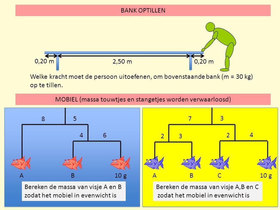 MOBIEL (massa touwtjes en stangetjes worden verwaarloosd) BANK OPTILLEN 2,50 m 0,20 m Welke kracht moet de persoon uitoefenen, om bovenstaande bank (m