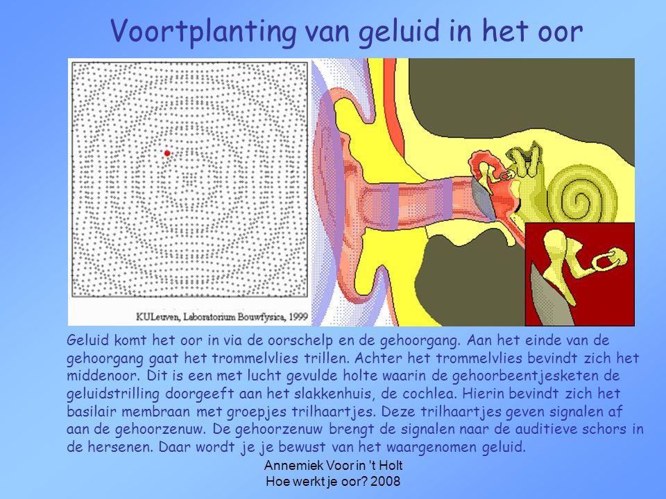 Annemiek Voor in 't Holt Hoe werkt je oor? 2008 Hoe werkt je oor? •Bouw van het oor •Hoe zit een audiogram in elkaar? •Wat hoor je met een gehoorverli