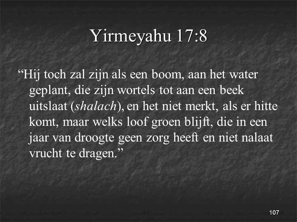 107 Yirmeyahu 17:8 Hij toch zal zijn als een boom, aan het water geplant, die zijn wortels tot aan een beek uitslaat (shalach), en het niet merkt, als er hitte komt, maar welks loof groen blijft, die in een jaar van droogte geen zorg heeft en niet nalaat vrucht te dragen.