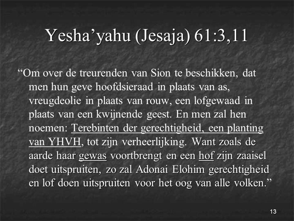 13 Yesha'yahu (Jesaja) 61:3,11 Want zoals de aarde haar gewas voortbrengt en een hof zijn zaaisel doet uitspruiten, zo zal Adonai Elohim gerechtigheid en lof doen uitspruiten voor het oog van alle volken.