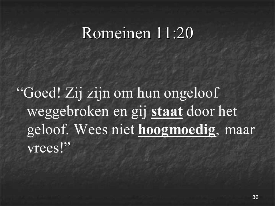 36 Romeinen 11:20 Goed. Zij zijn om hun ongeloof weggebroken en gij staat door het geloof.