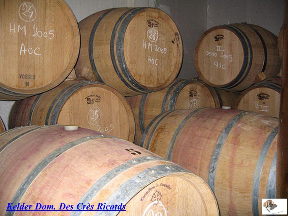 La démarche Terra Vitis garantit un mode de production de qualité respectant l'environnement. Les vins produits par le Château Magneau sont élaborés a