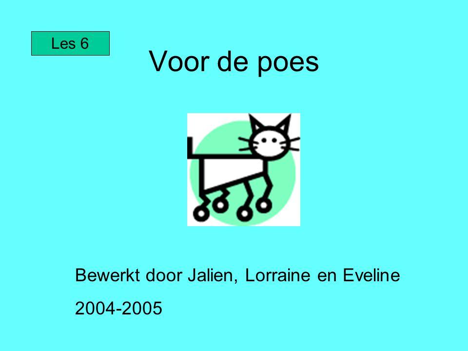 Voor de poes Bewerkt door Jalien, Lorraine en Eveline 2004-2005 Les 6