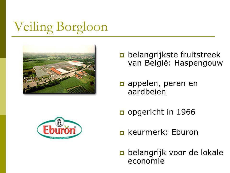 Veiling Borgloon  belangrijkste fruitstreek van België: Haspengouw  appelen, peren en aardbeien  opgericht in 1966  keurmerk: Eburon  belangrijk
