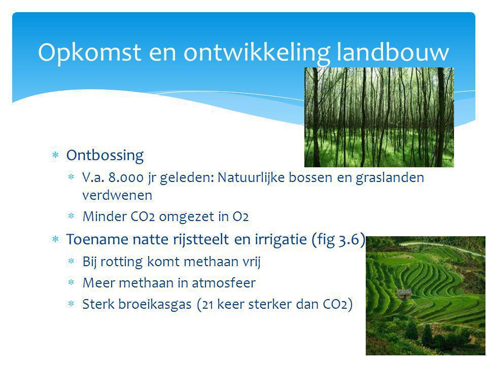Opkomst en ontwikkeling landbouw  Ontbossing  V.a. 8.000 jr geleden: Natuurlijke bossen en graslanden verdwenen  Minder CO2 omgezet in O2  Toename