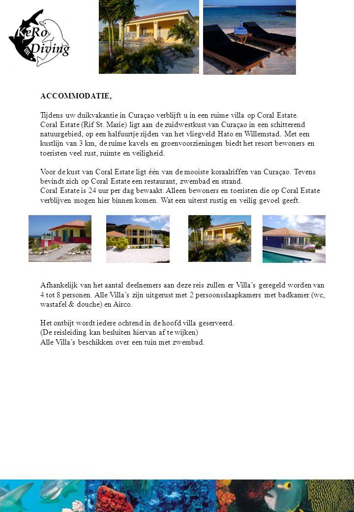 DE REIS, Samen met het complete reisgezelschap verblijft u tijdens uw duikvakantie in de ruime Villa's gelegen op Coral Estate.
