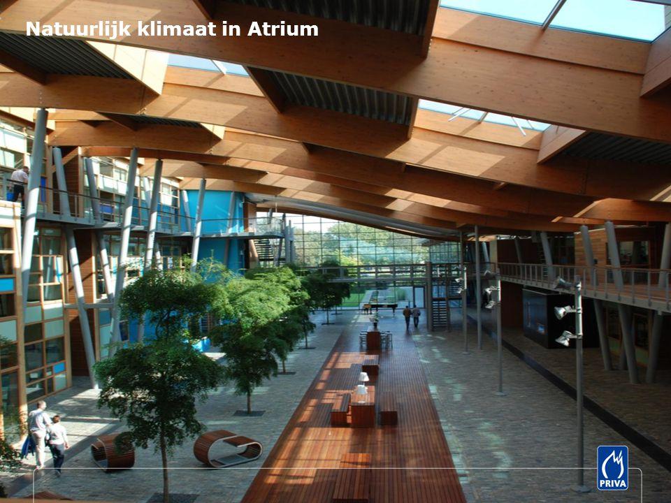 Natuurlijk klimaat in Atrium