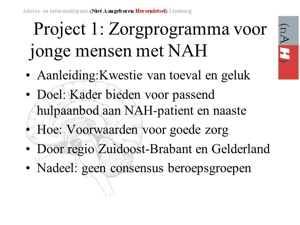 Project 1: Zorgprogramma voor jonge mensen met NAH •Aanleiding:Kwestie van toeval en geluk •Doel: Kader bieden voor passend hulpaanbod aan NAH-patient en naaste •Hoe: Voorwaarden voor goede zorg •Door regio Zuidoost-Brabant en Gelderland •Nadeel: geen consensus beroepsgroepen