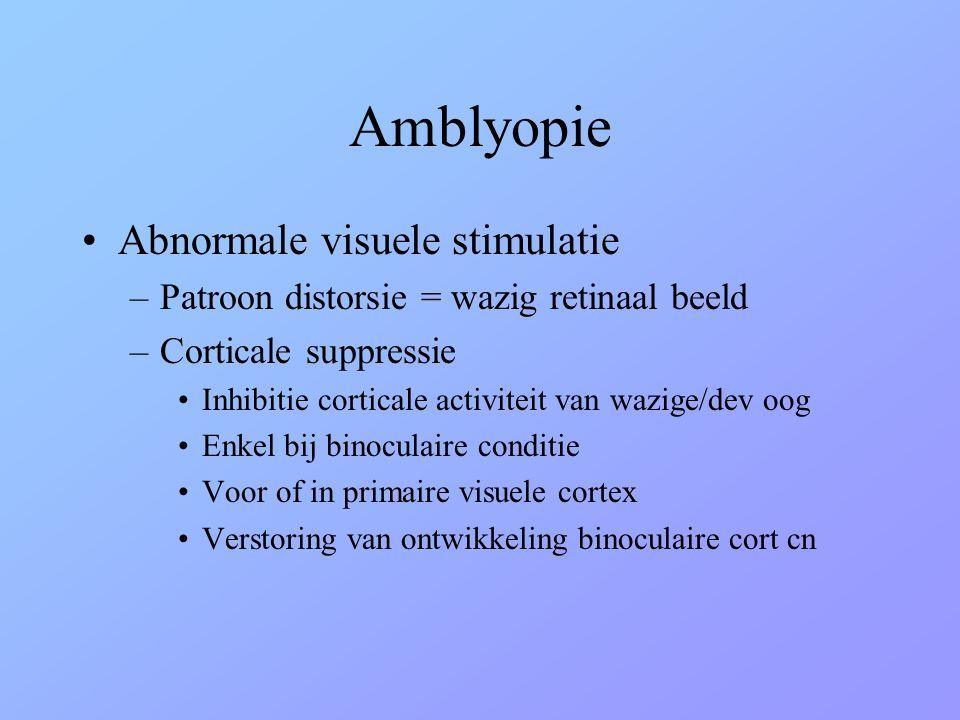 Amblyopie •Abnormale visuele stimulatie –Patroon distorsie = wazig retinaal beeld –Corticale suppressie •Inhibitie corticale activiteit van wazige/dev