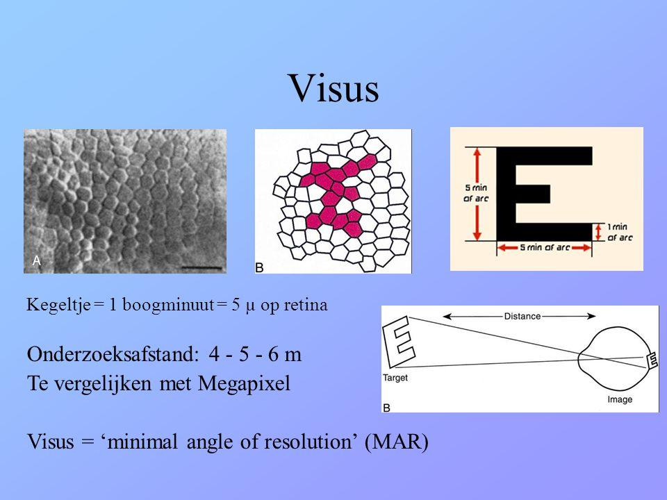 Visus Kegeltje = 1 boogminuut = 5 µ op retina Onderzoeksafstand: 4 - 5 - 6 m Te vergelijken met Megapixel Visus = 'minimal angle of resolution' (MAR)