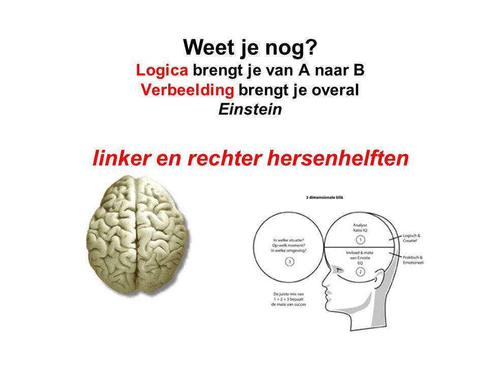 Weet je nog? Logica brengt je van A naar B Verbeelding brengt je overal Einstein linker en rechter hersenhelften