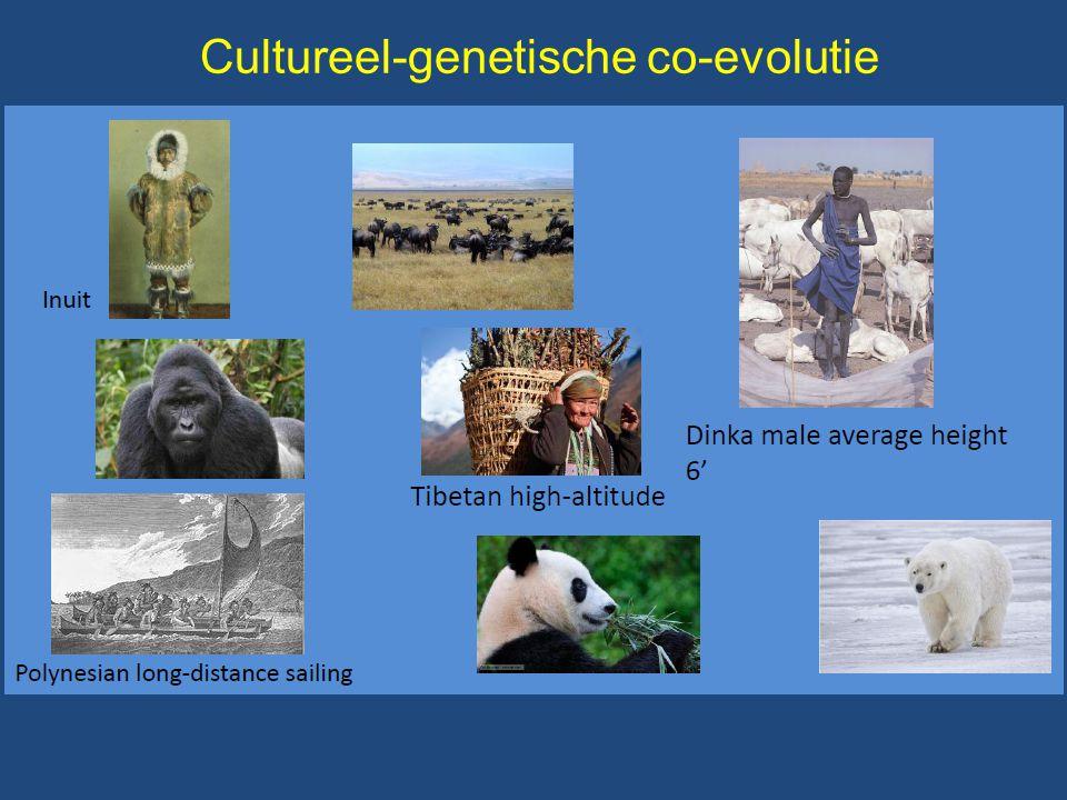 Cultureel-genetische co-evolutie