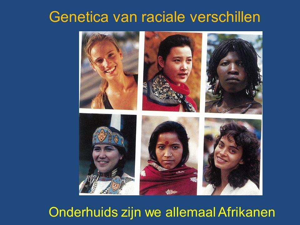 Onderhuids zijn we allemaal Afrikanen Genetica van raciale verschillen