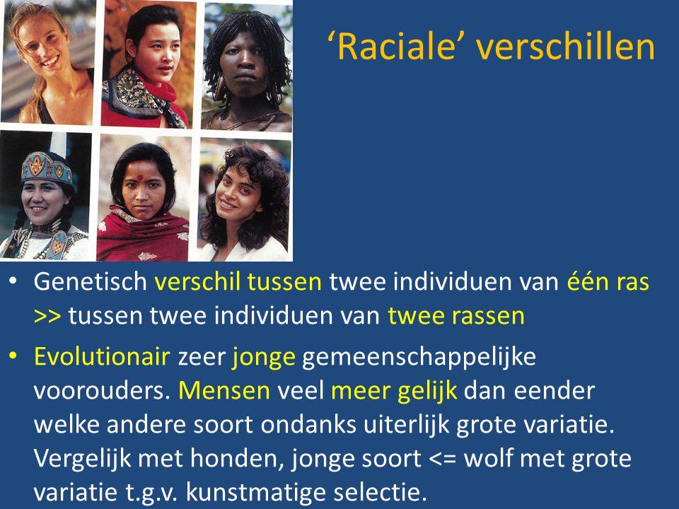 • Genetisch verschil tussen twee individuen van één ras >> tussen twee individuen van twee rassen • Evolutionair zeer jonge gemeenschappelijke vooroud