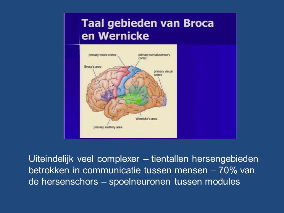 Uiteindelijk veel complexer – tientallen hersengebieden betrokken in communicatie tussen mensen – 70% van de hersenschors – spoelneuronen tussen modul