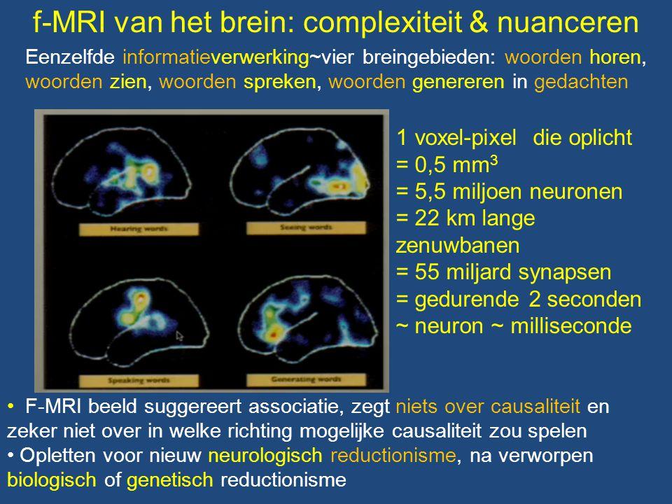Eenzelfde informatieverwerking~vier breingebieden: woorden horen, woorden zien, woorden spreken, woorden genereren in gedachten • F-MRI beeld suggeree