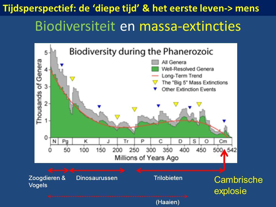Biodiversiteit en massa-extincties Cambrische explosie TrilobietenDinosaurussenZoogdieren & Vogels (Haaien) Tijdsperspectief: de 'diepe tijd' & het ee