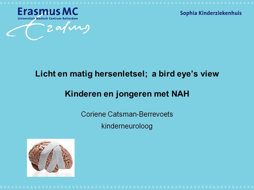 Licht en matig hersenletsel; a bird eye's view Kinderen en jongeren met NAH Coriene Catsman-Berrevoets kinderneuroloog