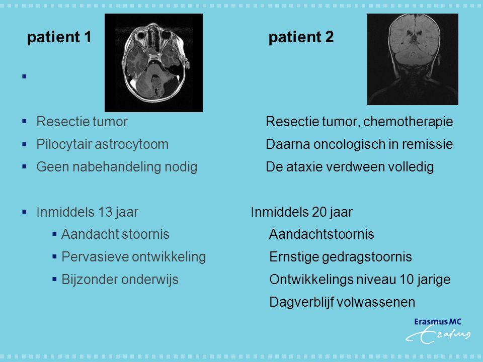 patient 1 patient 2   Resectie tumor  Pilocytair astrocytoom  Geen nabehandeling nodig  Inmiddels 13 jaar  Aandacht stoornis  Pervasieve ontwik