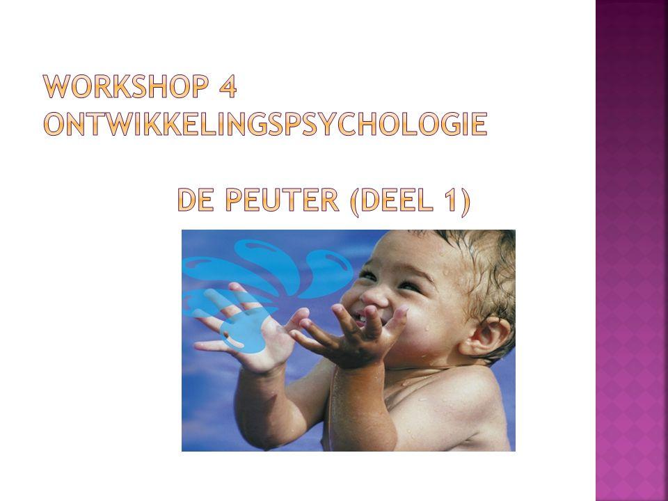  Doelen  Theorie  Lichamelijke ontwikkeling (groei, motoriek en zindelijkheid)  Cognitieve ontwikkeling (denken en taal)  Opdracht 3 (de peuter)  Doelen gehaald?