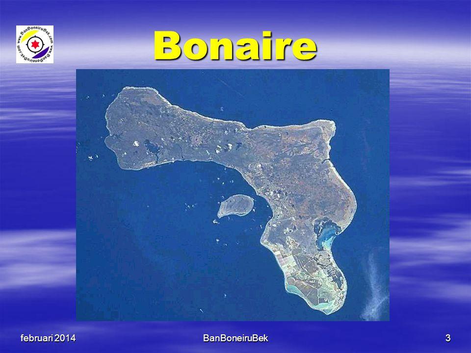 Bonaire Bonaire  288 km 2 (land)  L x B = 40 km x 8 km  17.408 inwoners  Kralendijk  Caribisch eiland  Rijksdienst -> Den Haag  US dollar Texel  162 km2 (land)  300 km2 (water)  L x B = 25 km x 8 km  13.566 inwoners  Den Burg  Waddeneiland  Provincie NH  Euro februari 2014BanBoneiruBek4