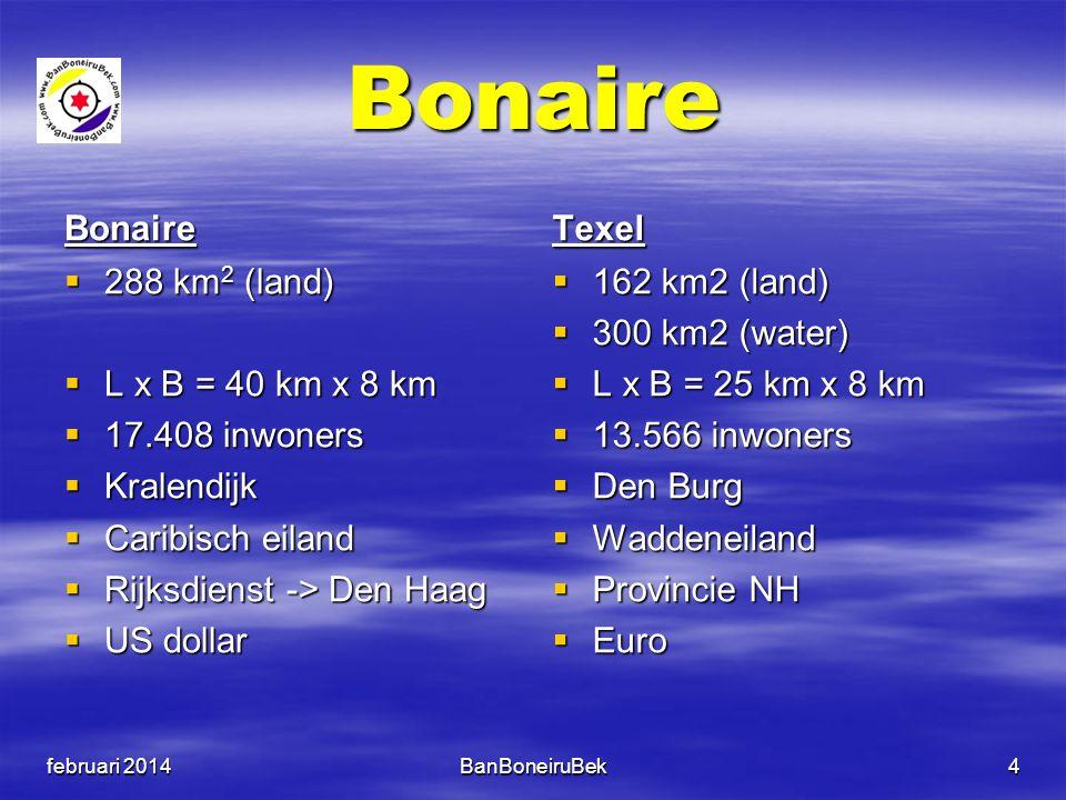 Bonaire Bonaire  288 km 2 (land)  L x B = 40 km x 8 km  17.408 inwoners  Kralendijk  Caribisch eiland  Rijksdienst -> Den Haag  US dollar Texel