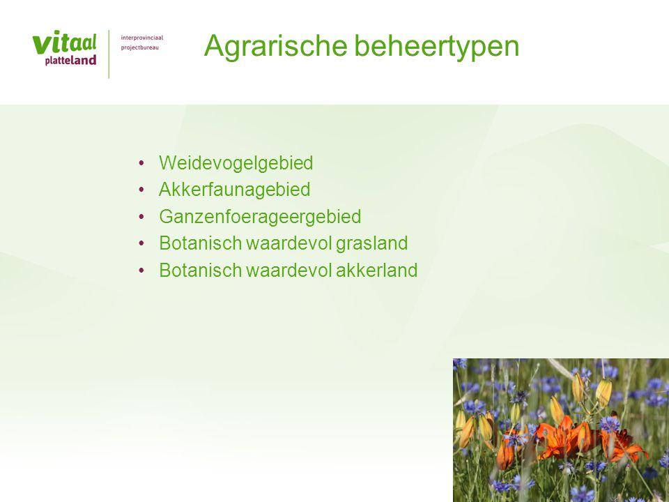 •Weidevogelgebied •Akkerfaunagebied •Ganzenfoerageergebied •Botanisch waardevol grasland •Botanisch waardevol akkerland Agrarische beheertypen