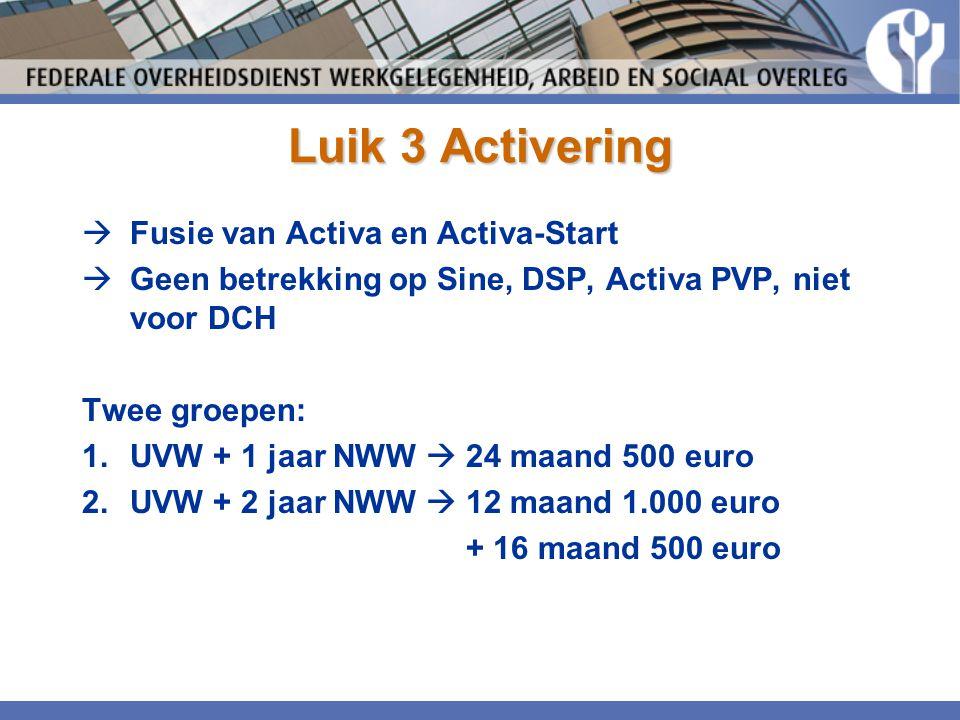 Luik 3 Activering  Fusie van Activa en Activa-Start  Geen betrekking op Sine, DSP, Activa PVP, niet voor DCH Twee groepen: 1.UVW + 1 jaar NWW  24 m