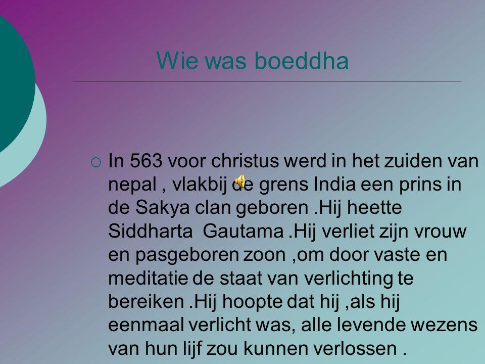 Boeddhisme  Boeddhisme is in Nederland geen exotisch verschijnsel meer. Mediteren is voor steeds meer mensen de oplossing om tot rust te komen. Twee
