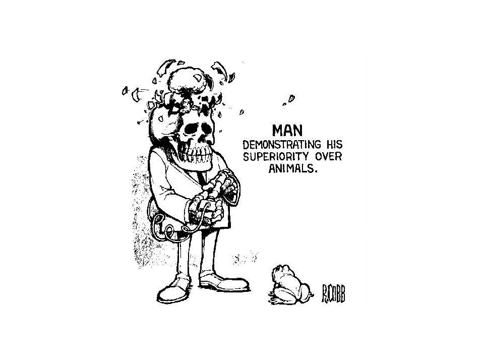 Man is Superior