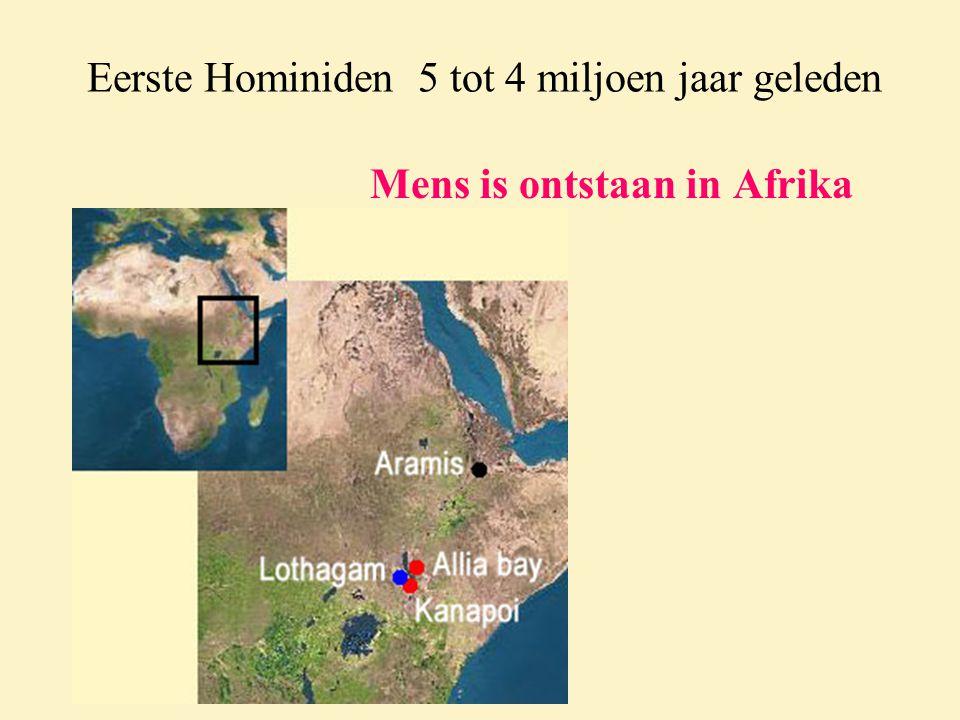 Eerste Hominiden 5 tot 4 miljoen jaar geleden Mens is ontstaan in Afrika