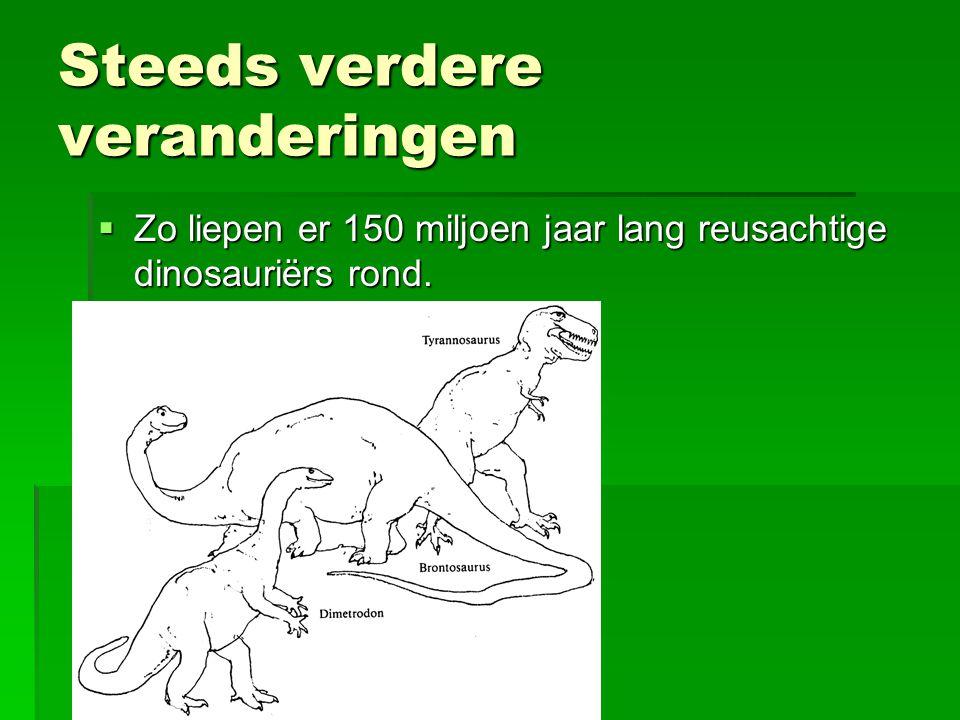 Steeds verdere veranderingen  Zo liepen er 150 miljoen jaar lang reusachtige dinosauriërs rond.