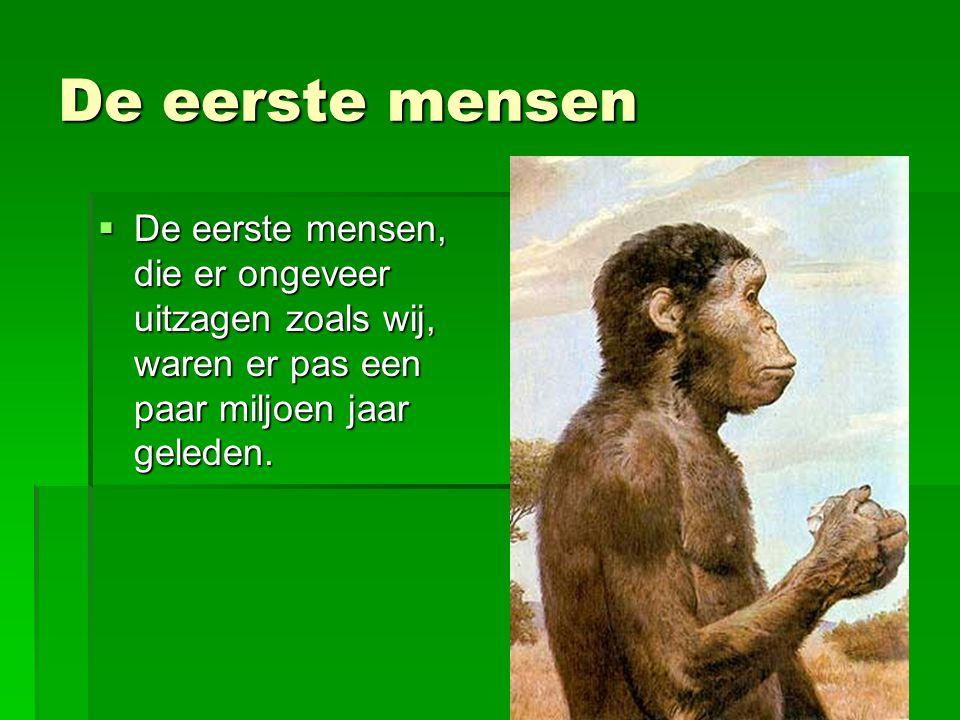 De eerste mensen  De eerste mensen, die er ongeveer uitzagen zoals wij, waren er pas een paar miljoen jaar geleden.