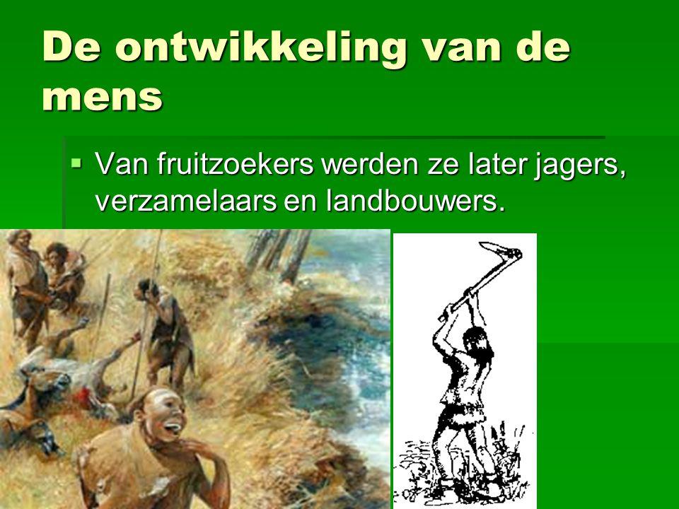 De ontwikkeling van de mens  Van fruitzoekers werden ze later jagers, verzamelaars en landbouwers.