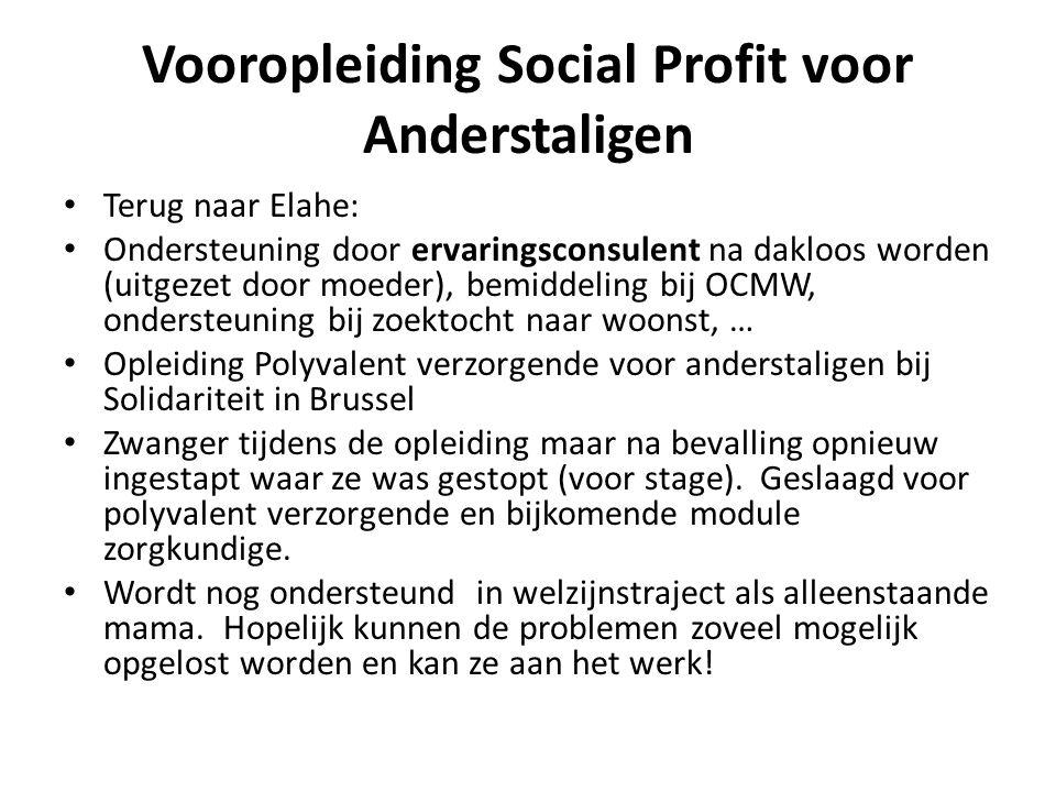 Vooropleiding Social Profit voor Anderstaligen • Terug naar Elahe: • Ondersteuning door ervaringsconsulent na dakloos worden (uitgezet door moeder), b