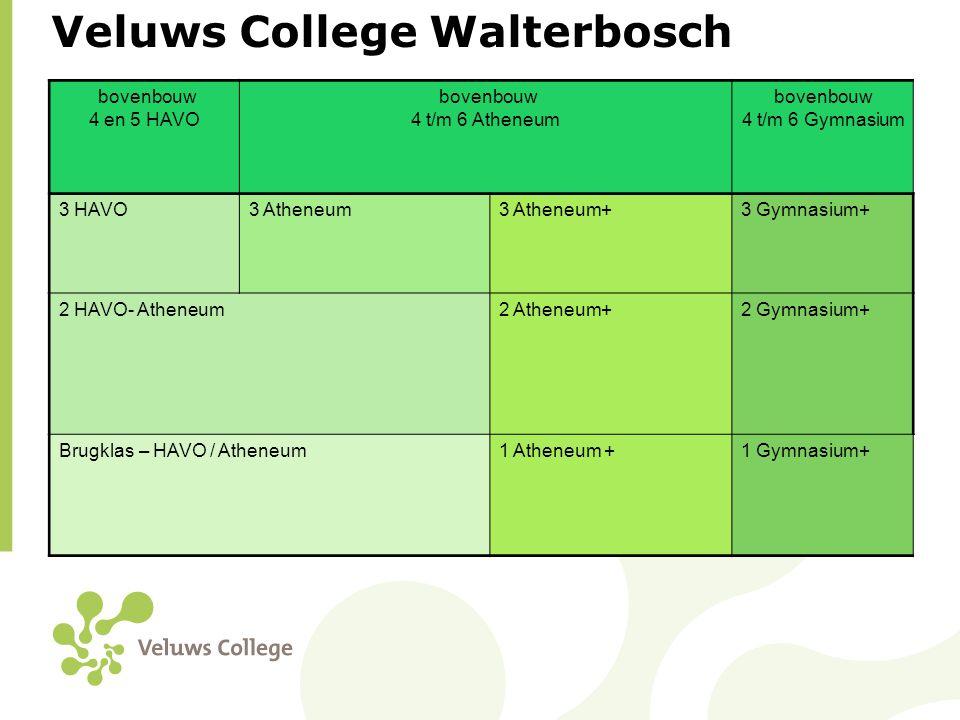 Ruimte voor individuele ontplooiing • VWO+ • Plusvakken: een vak naar keuze voor alle leerlingen van de reguliere klassen (2 uur per week in klas 1, 2 en 3).