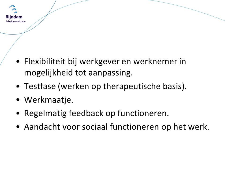 •Flexibiliteit bij werkgever en werknemer in mogelijkheid tot aanpassing. •Testfase (werken op therapeutische basis). •Werkmaatje. •Regelmatig feedbac